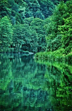 Fotografía del Río Miño a su paso por Lugo